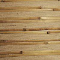Бамбук-тростник